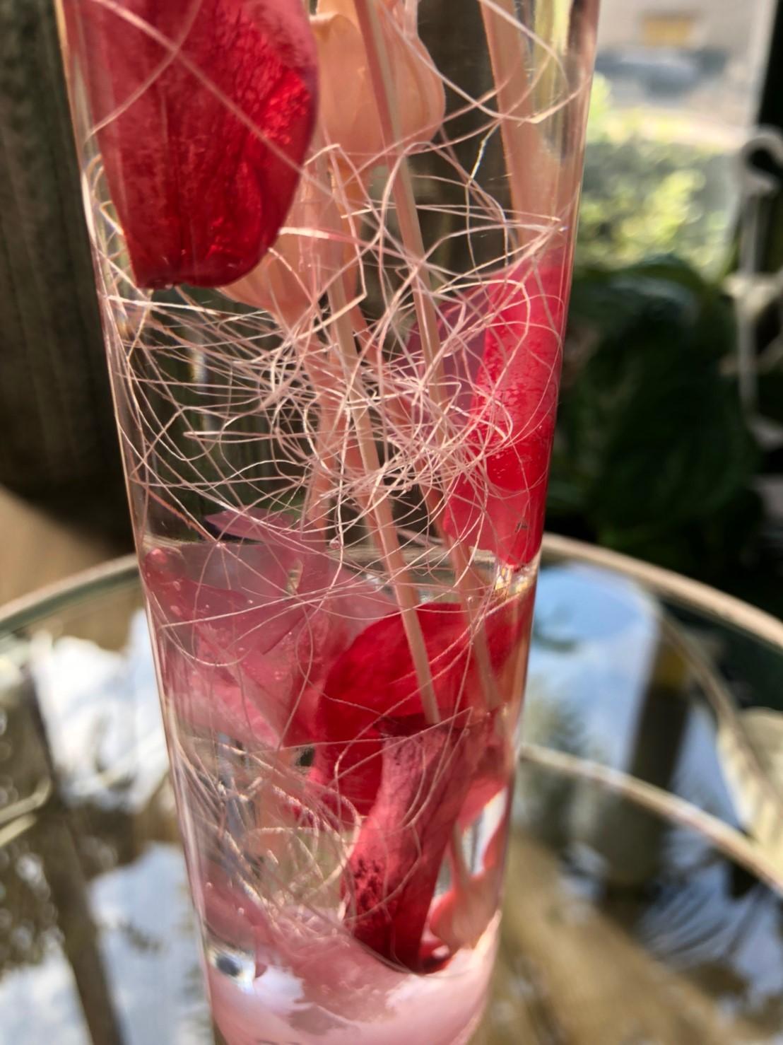 ハーバリウム ブロッサム - made by Heartflower