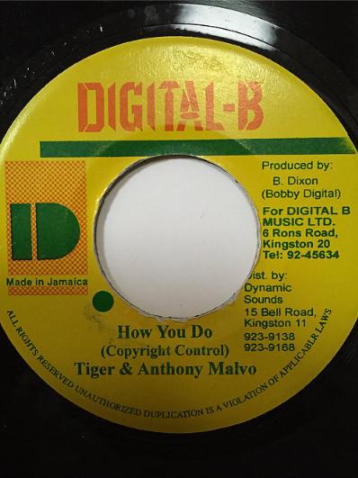 Tiger(タイガー) & Anthony Malvo(アンソニーマルボ) - How Do You【7'】