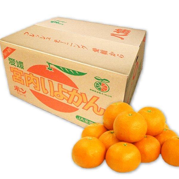 八協いよかん10kg箱 優品2LまたはLサイズ 愛媛西宇和産★送料無料 - 画像1