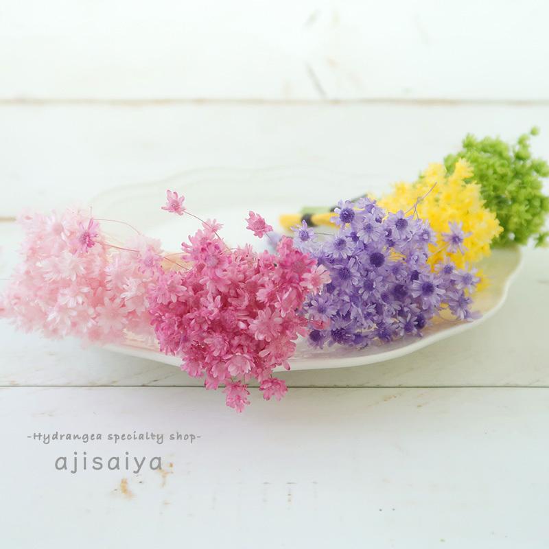 春のパステル花材 <スターフラワーミニ> カラードライフラワー