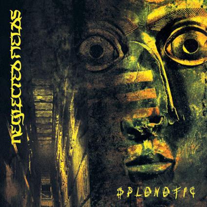 """NEGLECTED FIELDS """"Splenetic""""日本盤"""