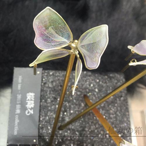 【ひらり舞う】ー胡蝶 Phalaenopsis
