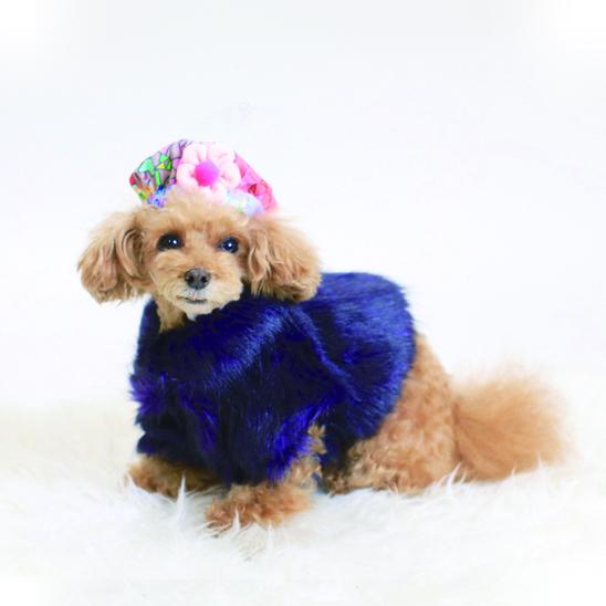 jibun-fuku DOG 【コート】DOGCORT2018174