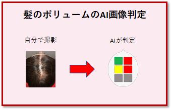 髪のボリューム AI画像判定 1回分