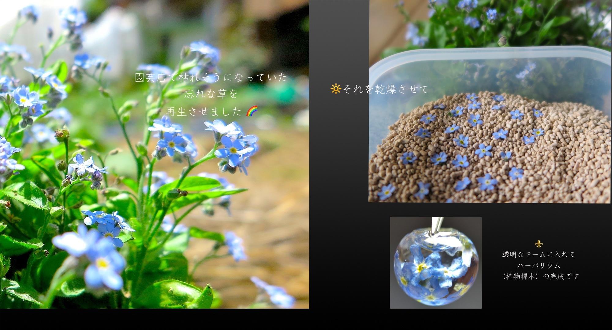 【14GDF】ハーバリウムネックレス *Eternal Love...勿忘草と3つの石の物語Vol.2*