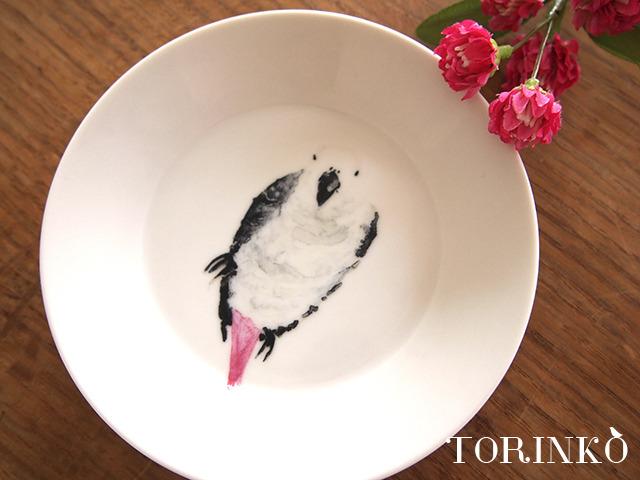 ヨウム お皿 中サイズ (インコ・オウム・鳥)