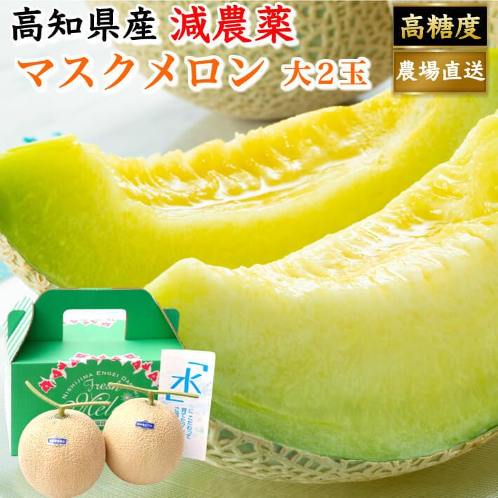 贈答用 高級 マスクメロン 大玉(約1,5kg×2) お取り寄せ ギフト フルーツ 果物 高知県産 送料無料