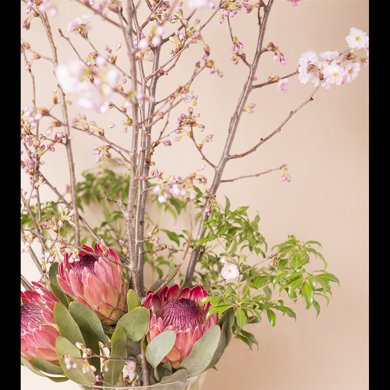 季節の枝物【12ヶ月定期便】