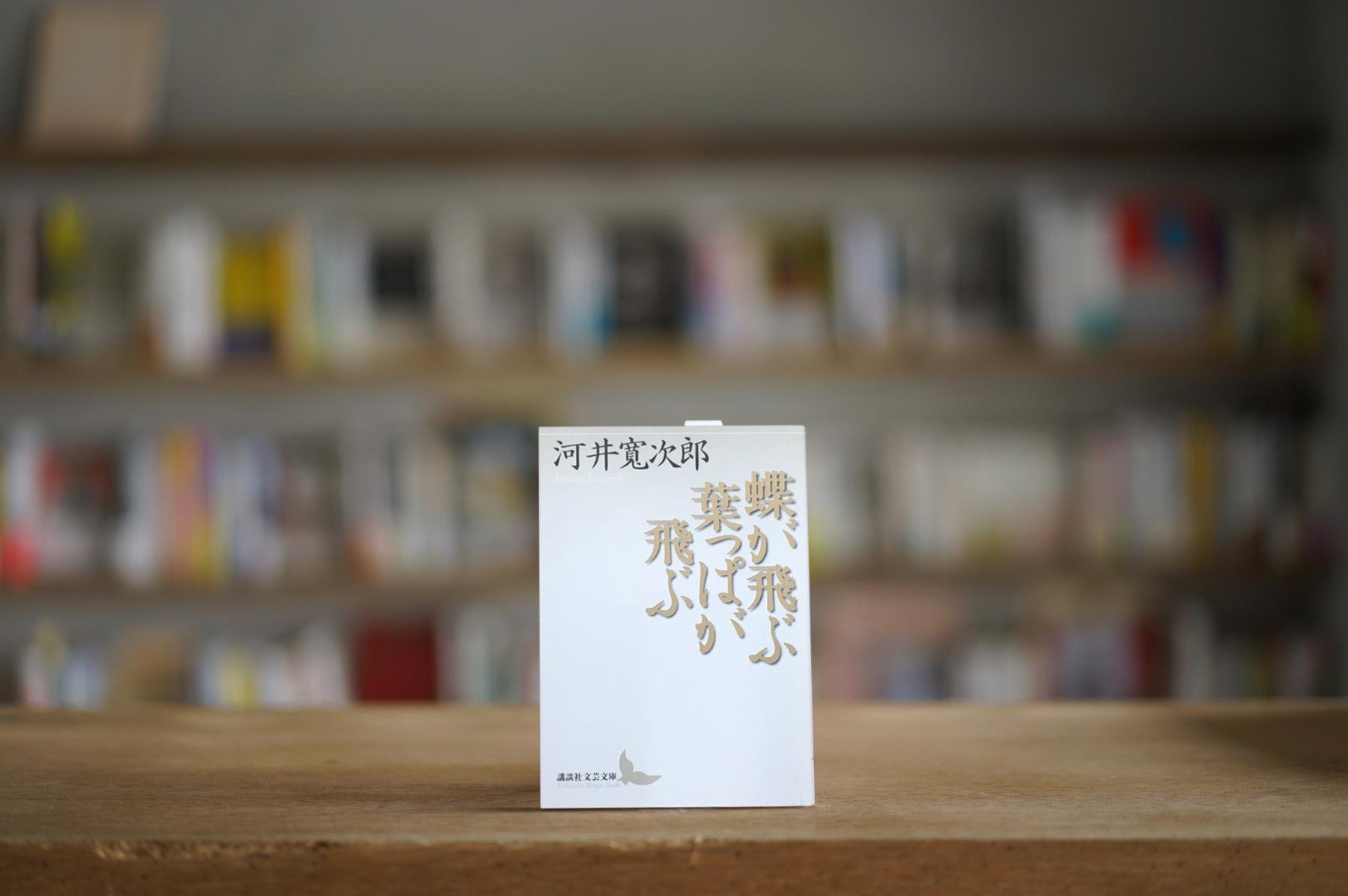 河井寛次郎 『蝶が飛ぶ葉っぱが飛ぶ』 (講談社、2006)