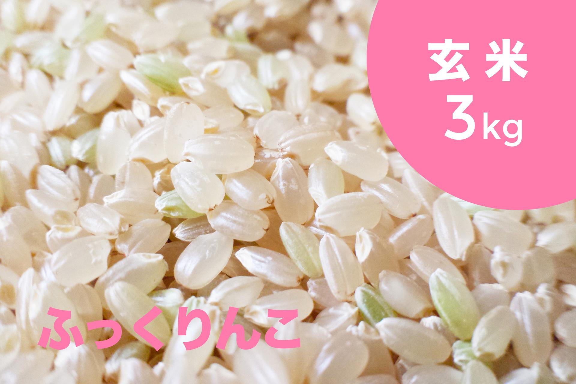 特別栽培米 ふっくりんこ(玄米)3kg【令和2年産】