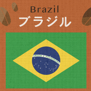 ブラジル・フローラルブルボンナチュラル(大袋400g)