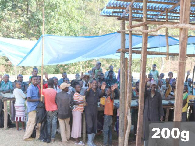 エチオピア | シダモ ベンサ ロギータCWS ウォッシュド | コーヒー豆200g