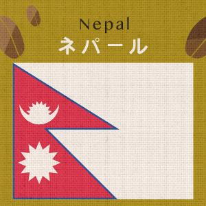 【無農薬/有機栽培】ネパール・ホワイトマウンテンズ(大袋400g)