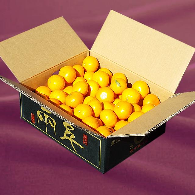 「日の丸みかん 千両 良品」Lサイズ 5kg