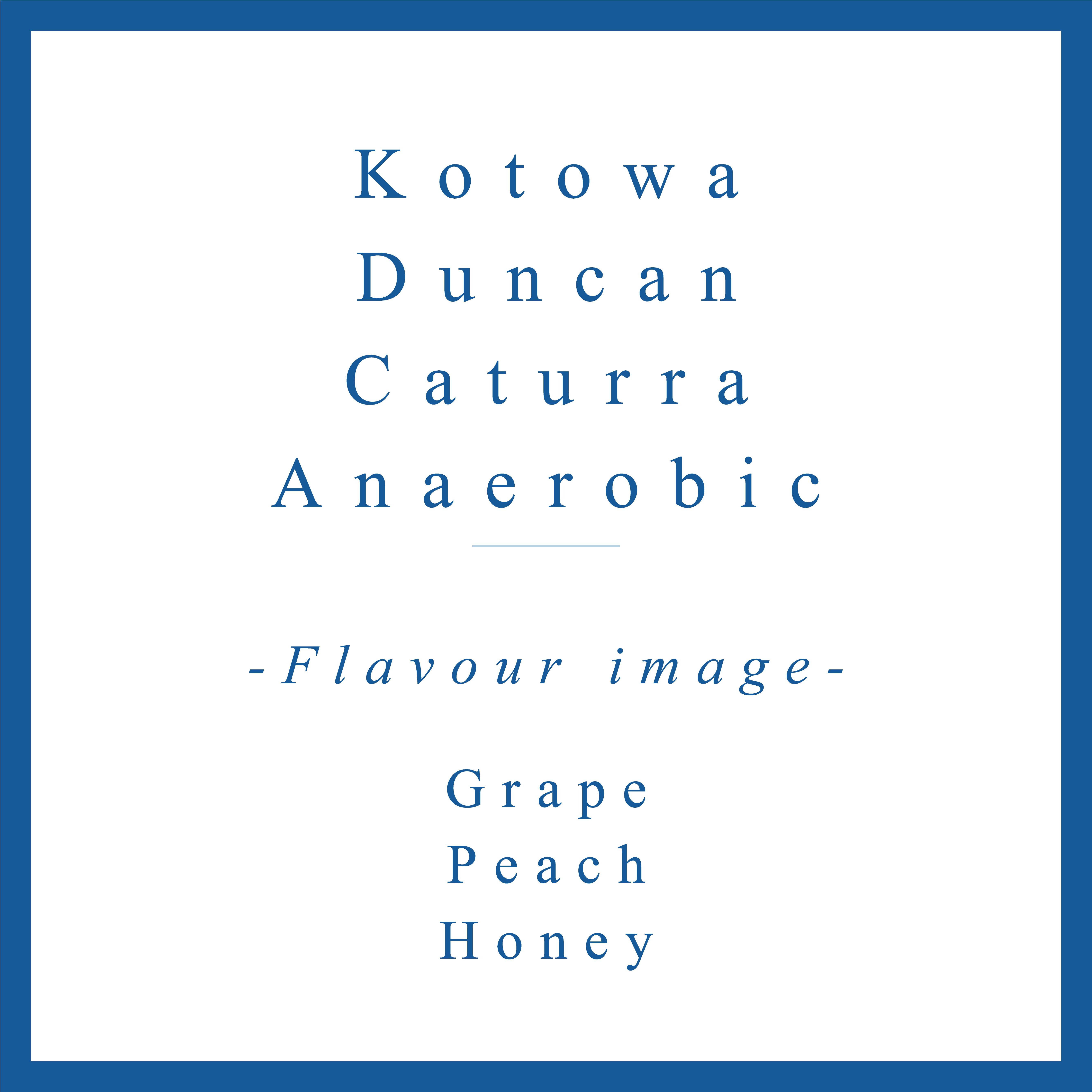 Kotowa Caturra Duncan Anaerobic