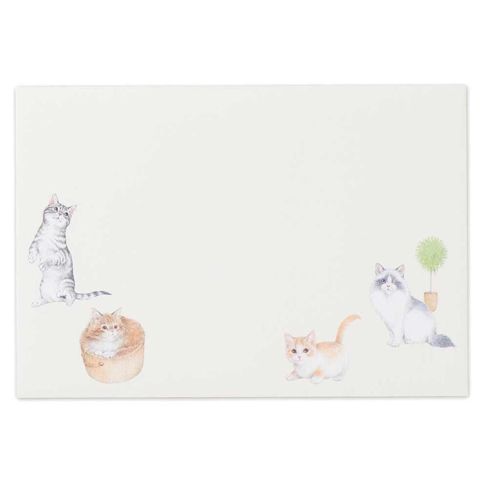 猫封筒(ねこのひととき)