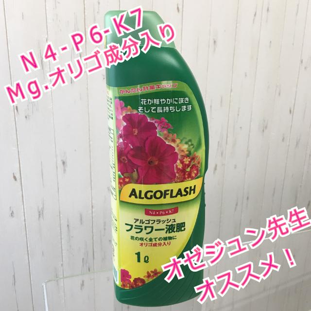 アルゴフラッシュフラワー液肥1ℓオゼジュン先生イチオシ!液体肥料 - 画像1