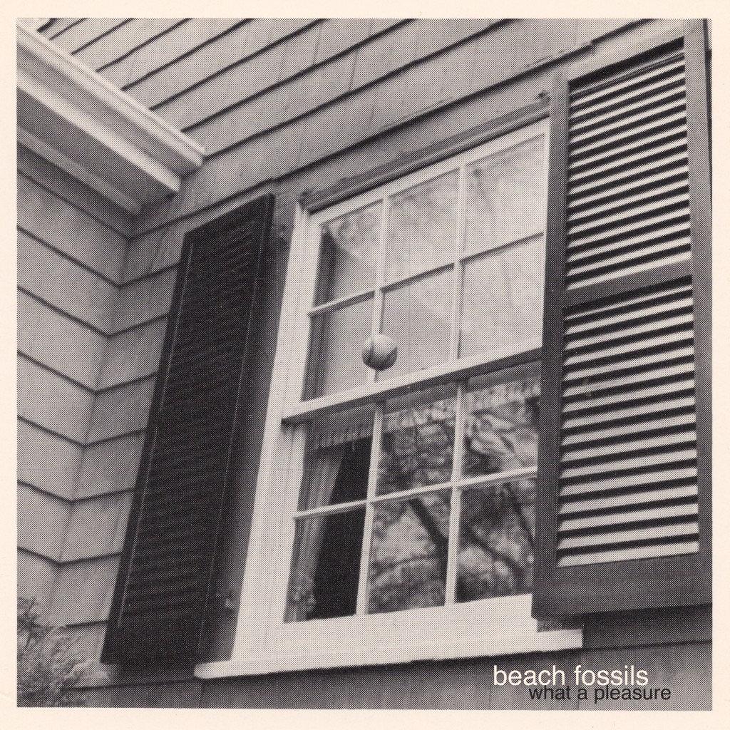 Beach Fossils / What a Pleasure(Ltd Cassette)
