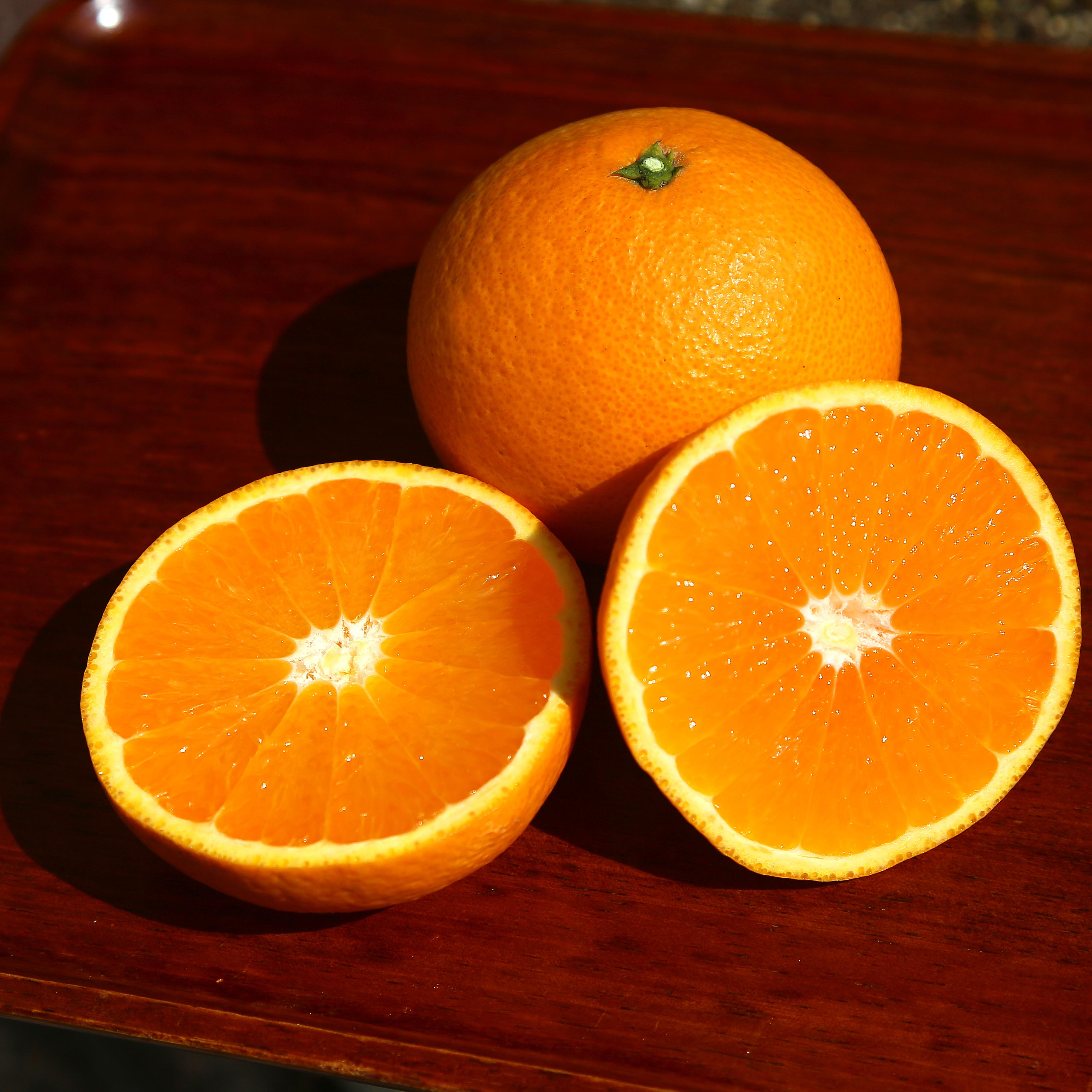 清見タンゴール 優品(家庭用) 2L~Lサイズ 5kg