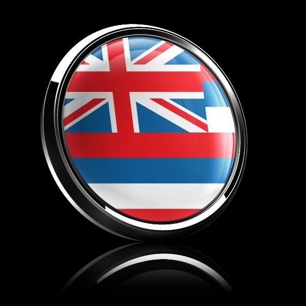 ゴーバッジ(ドーム)(CD0630 - FLAG HAWAII) - 画像2