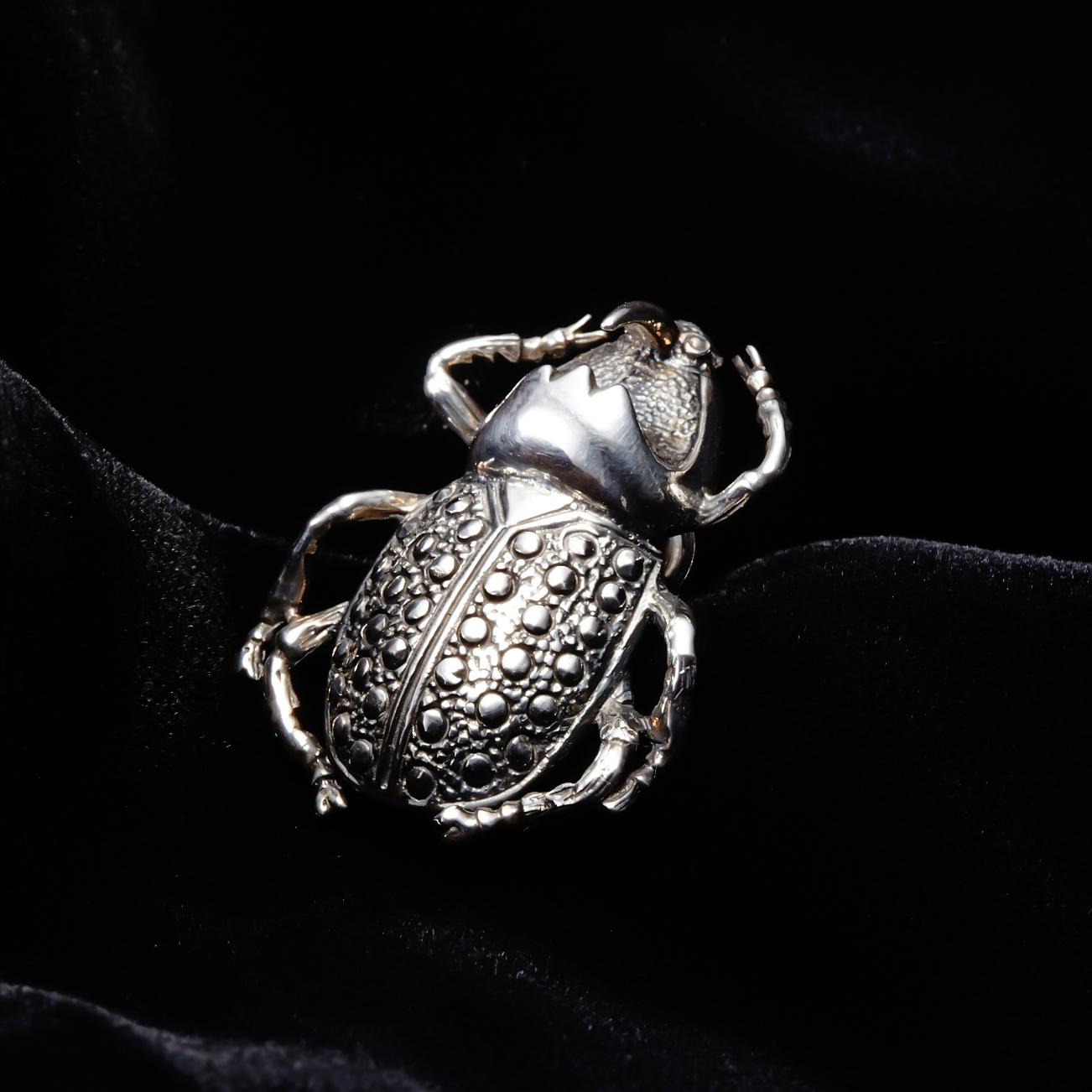 A symbol of good luck Scarab Pin badge