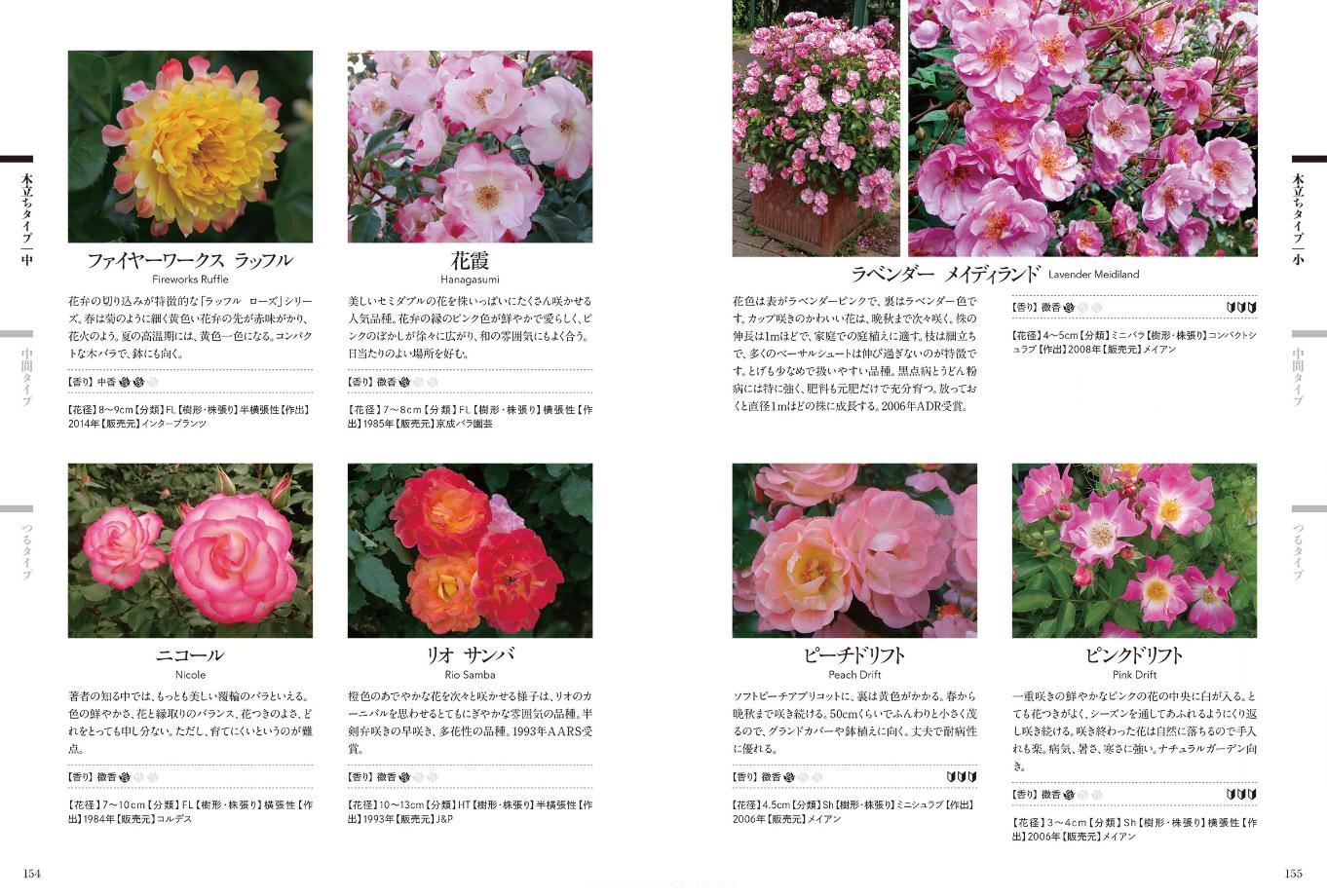 【送料無料】『ガーデンライフシリーズ モダンローズ』[書籍] - 画像3
