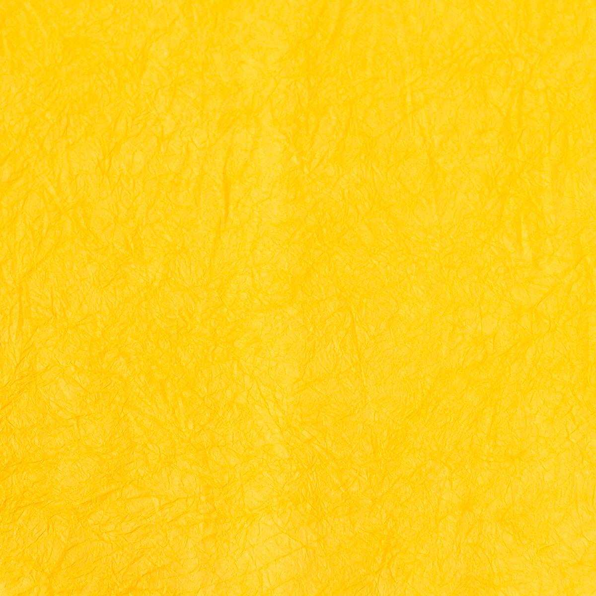 王朝のそめいろ 中厚口 21番 黄支子