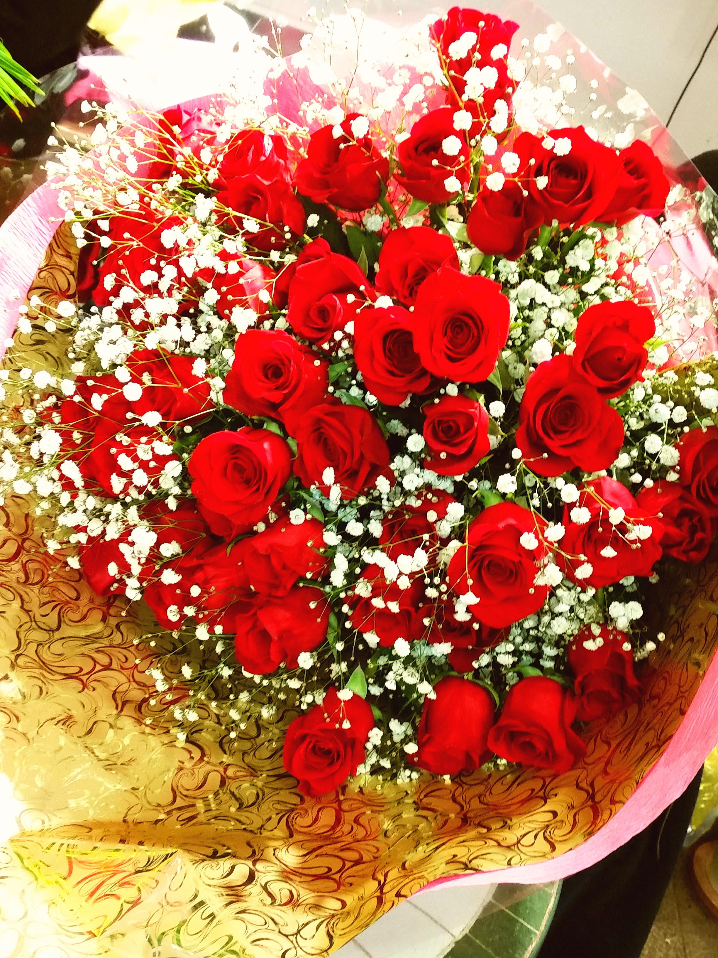 bu008 花束 赤バラ50本+カスミソウ
