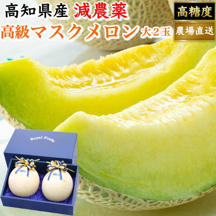 贈答用 高級ギフト箱 マスクメロン 大玉(約1,5kg×2) お取り寄せ ギフト フルーツ 果物 高知県産 送料無料