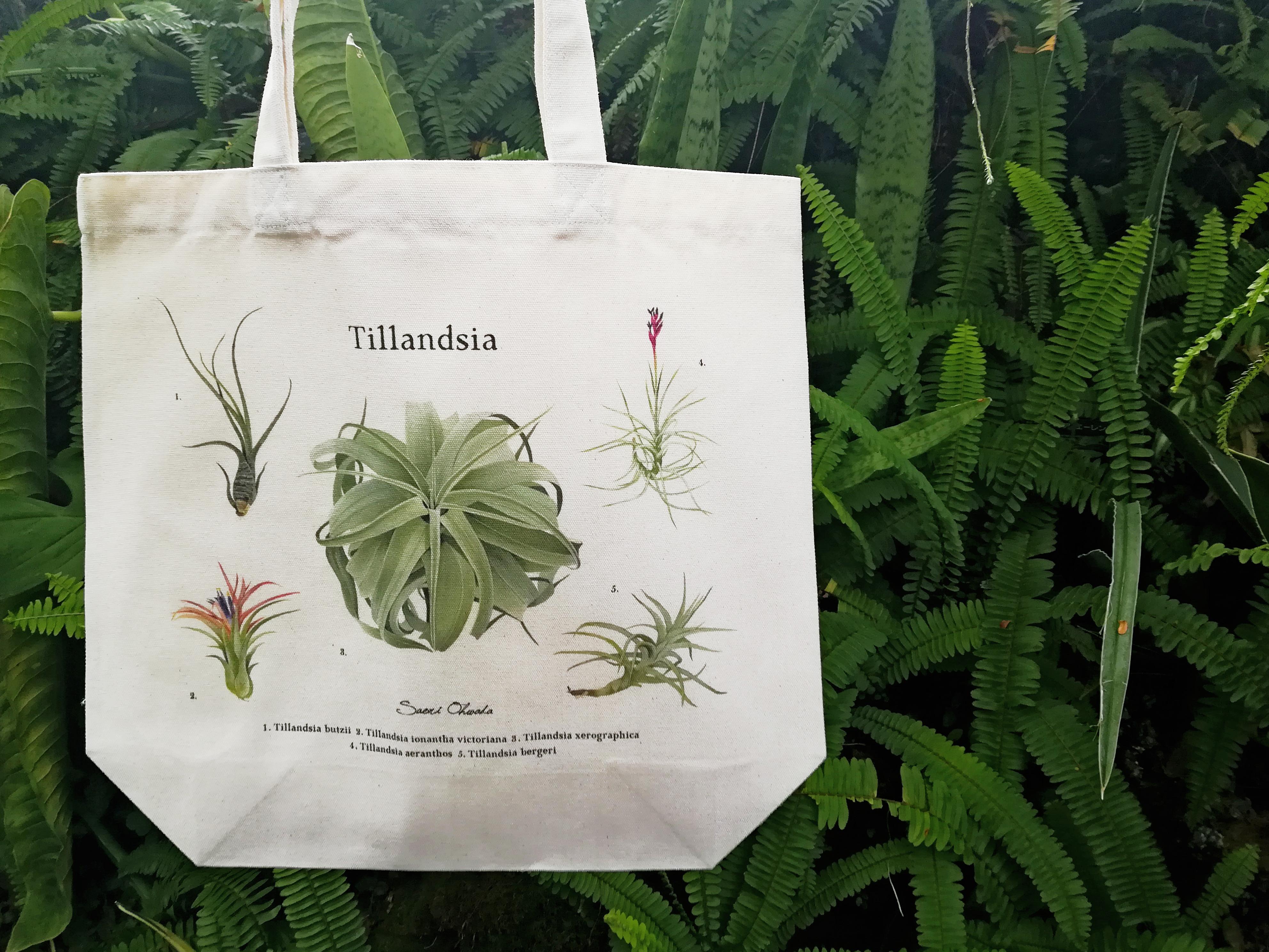 Tillandsia tote bag トートバッグ