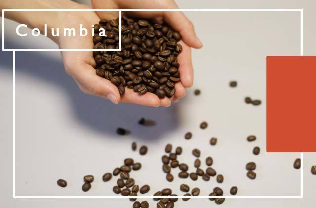 [コロンビア] 水素焙煎珈琲豆