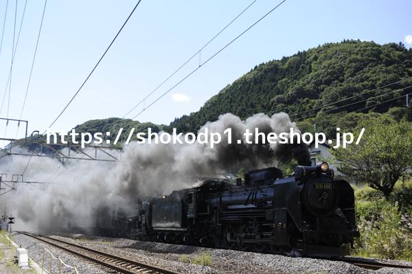 D51 498とC58 363の重連と蒸気_DSC2619