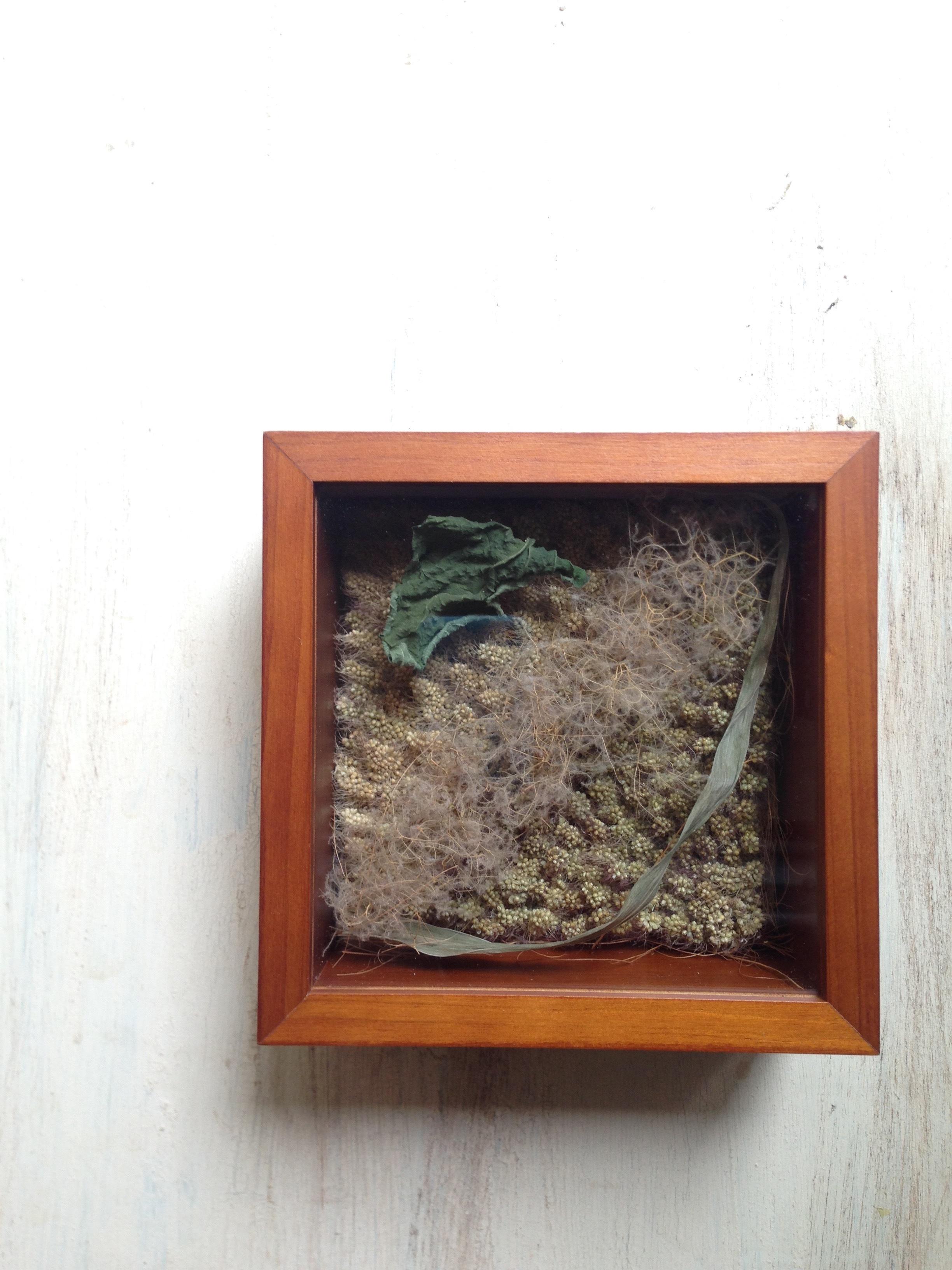 植物のコラージュ
