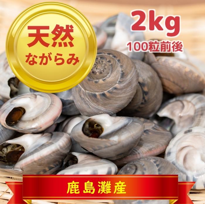 天然ながらみ 2kg(鹿島灘・九十九里浜産 冷凍)