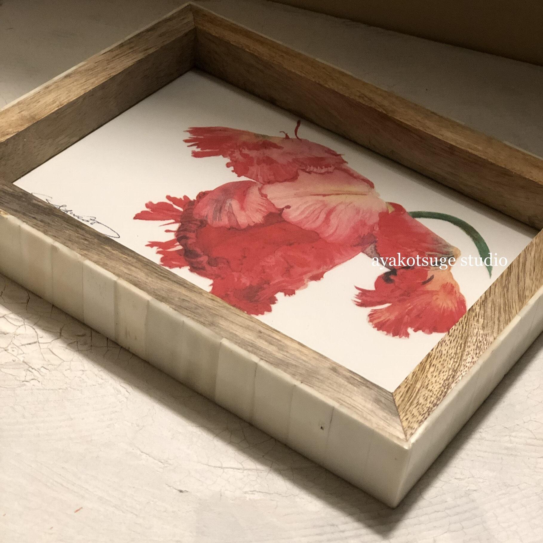 La Forma Japan  フレーム1個付き、絵ハガキ12か月とミニ画集