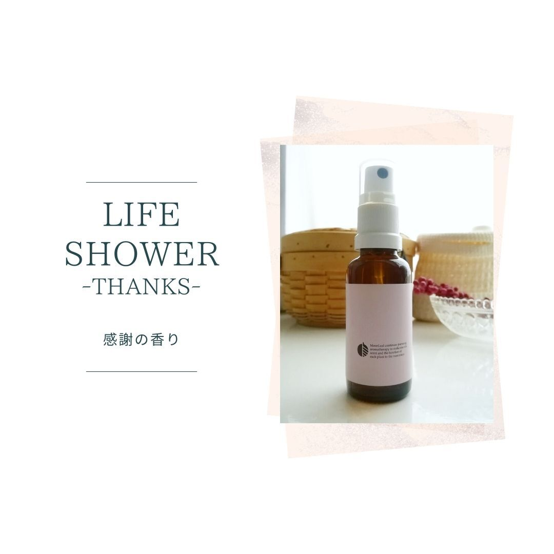 LIFE  SHOWER  (THE THANKS)