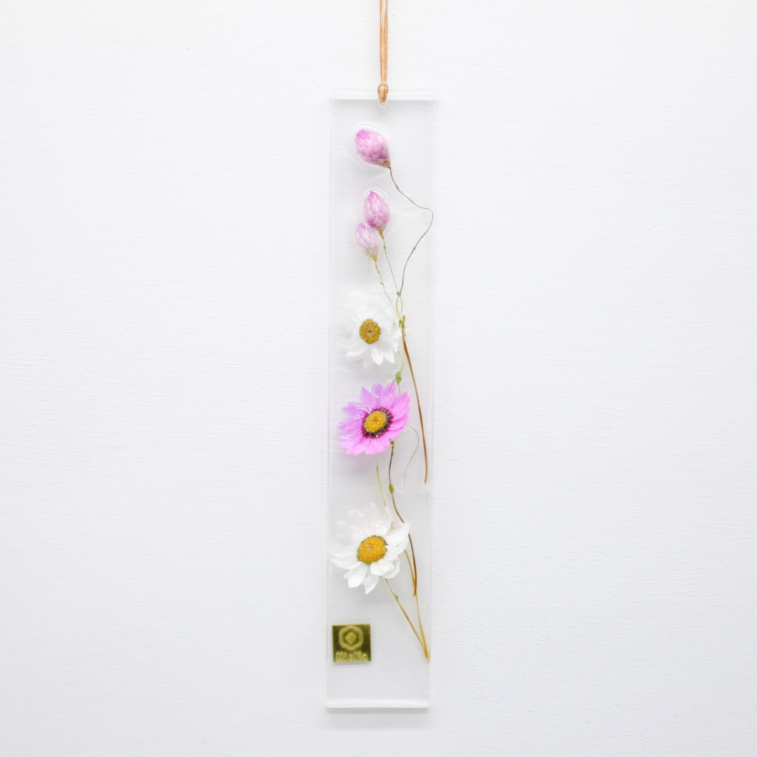 dried flower S ローダンセ ピンクホワイト 限定 S