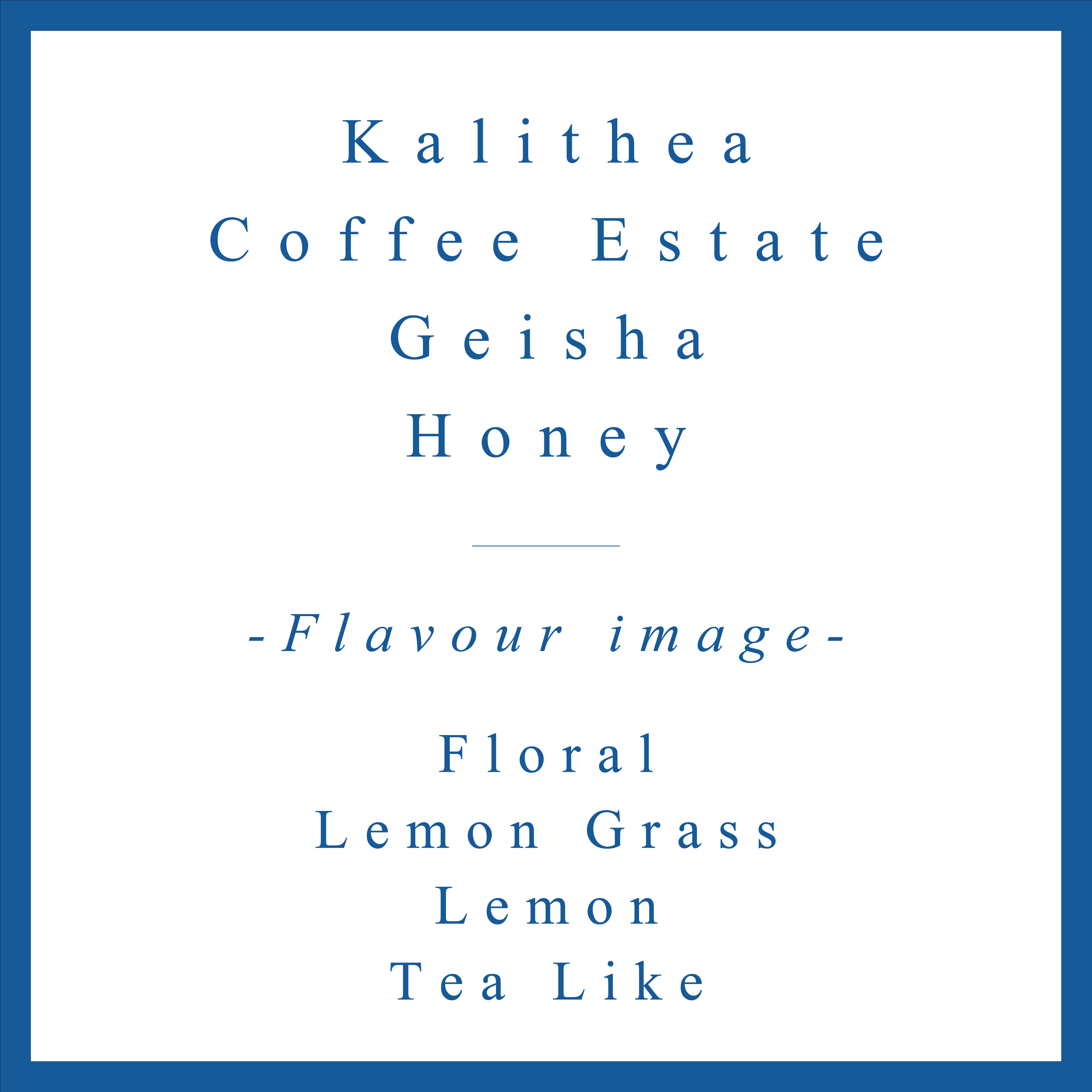 Kalithea  Geisha Honey