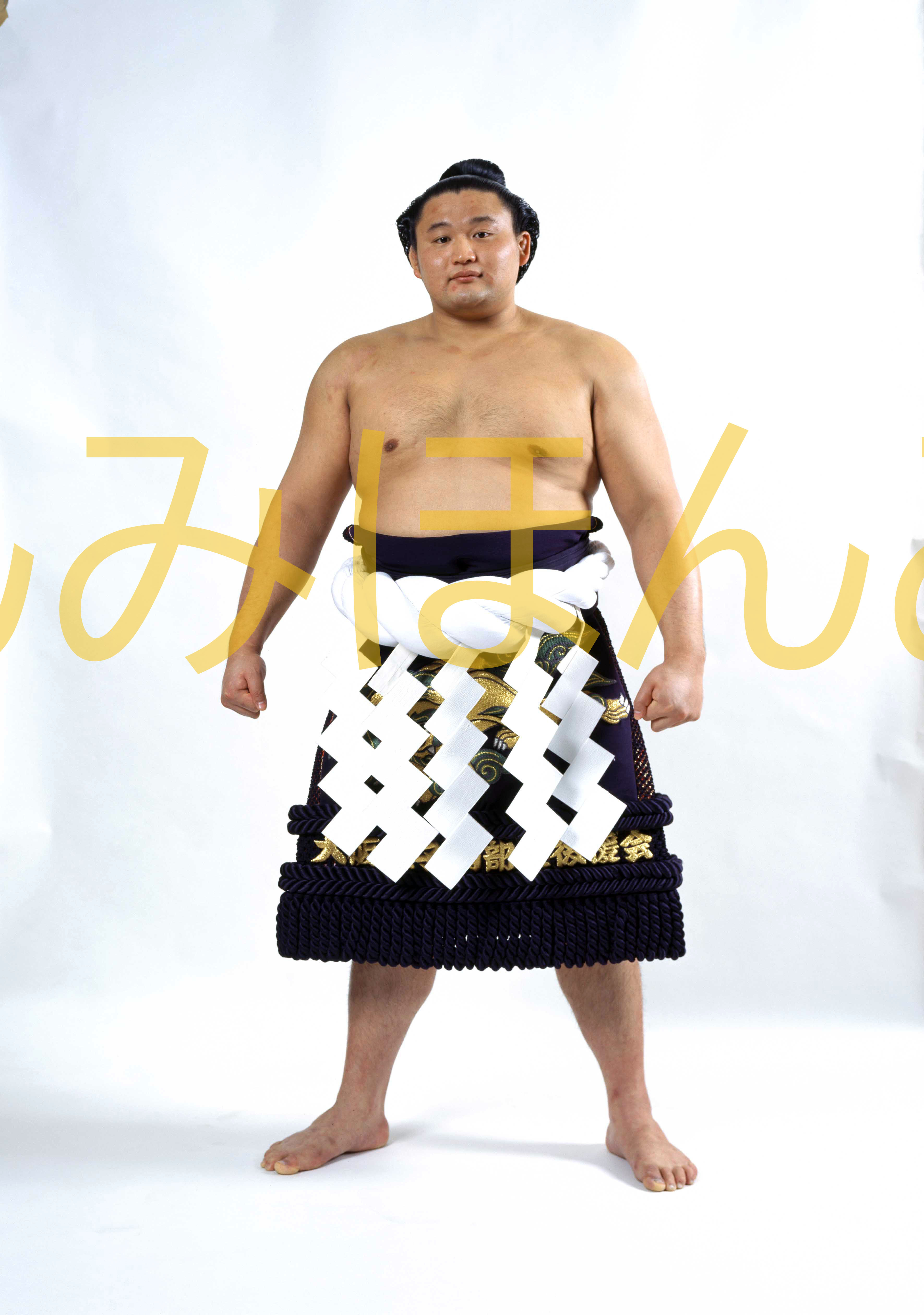 平成8年3月場所優勝 横綱 貴乃花光司関(12回目の優勝)