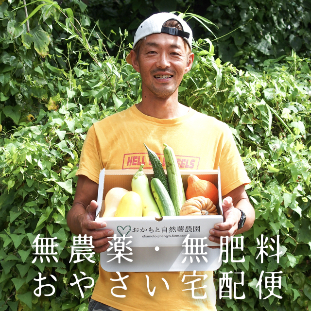 【無農薬・無肥料】夏野菜+秋野菜 おまかせ野菜便 8種入り