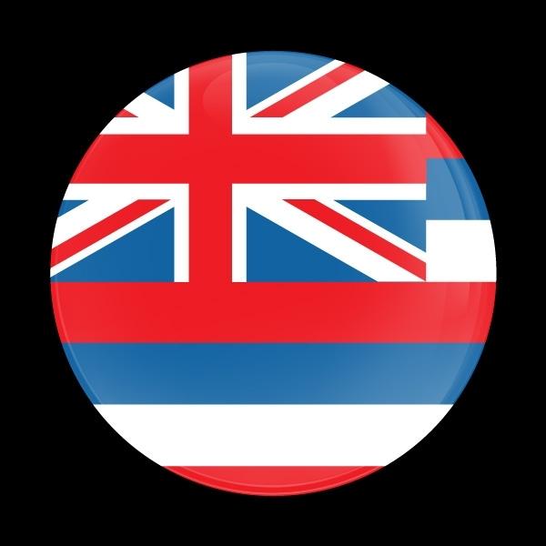 ゴーバッジ(ドーム)(CD0630 - FLAG HAWAII) - 画像1