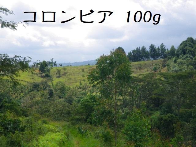 コロンビア サントゥアリオ 中煎り 100g