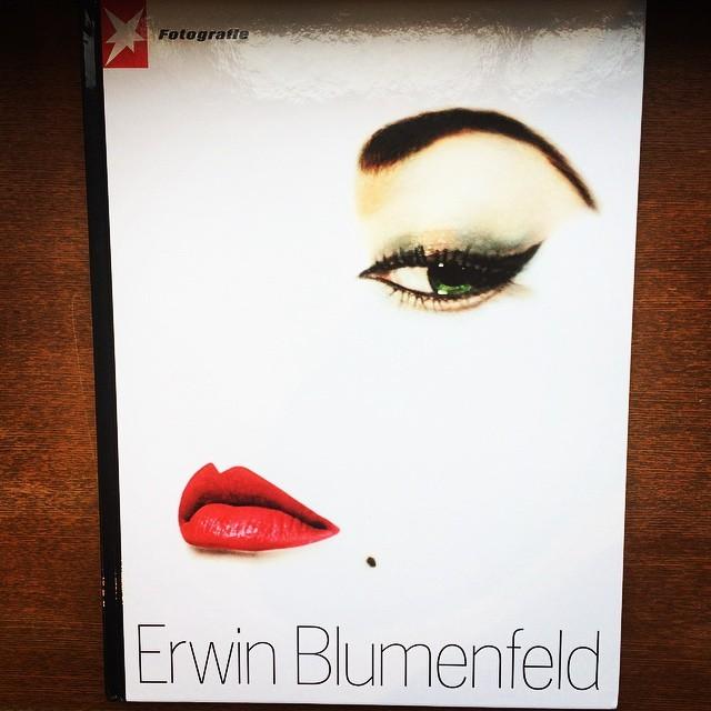 写真集「Erwin Blumenfeld」 - 画像1