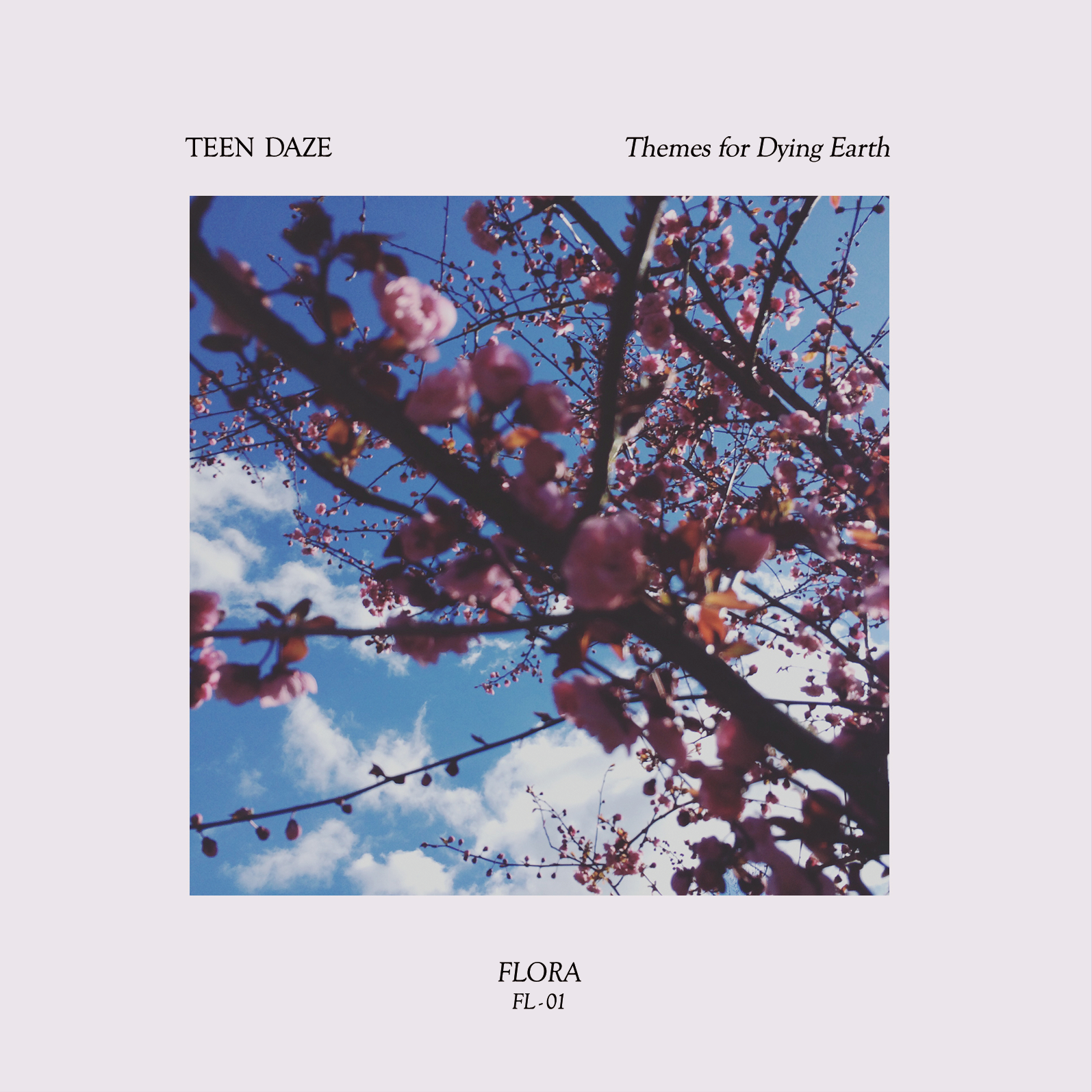 Teen Daze『Themes For Dying Earth』(PLANCHA)