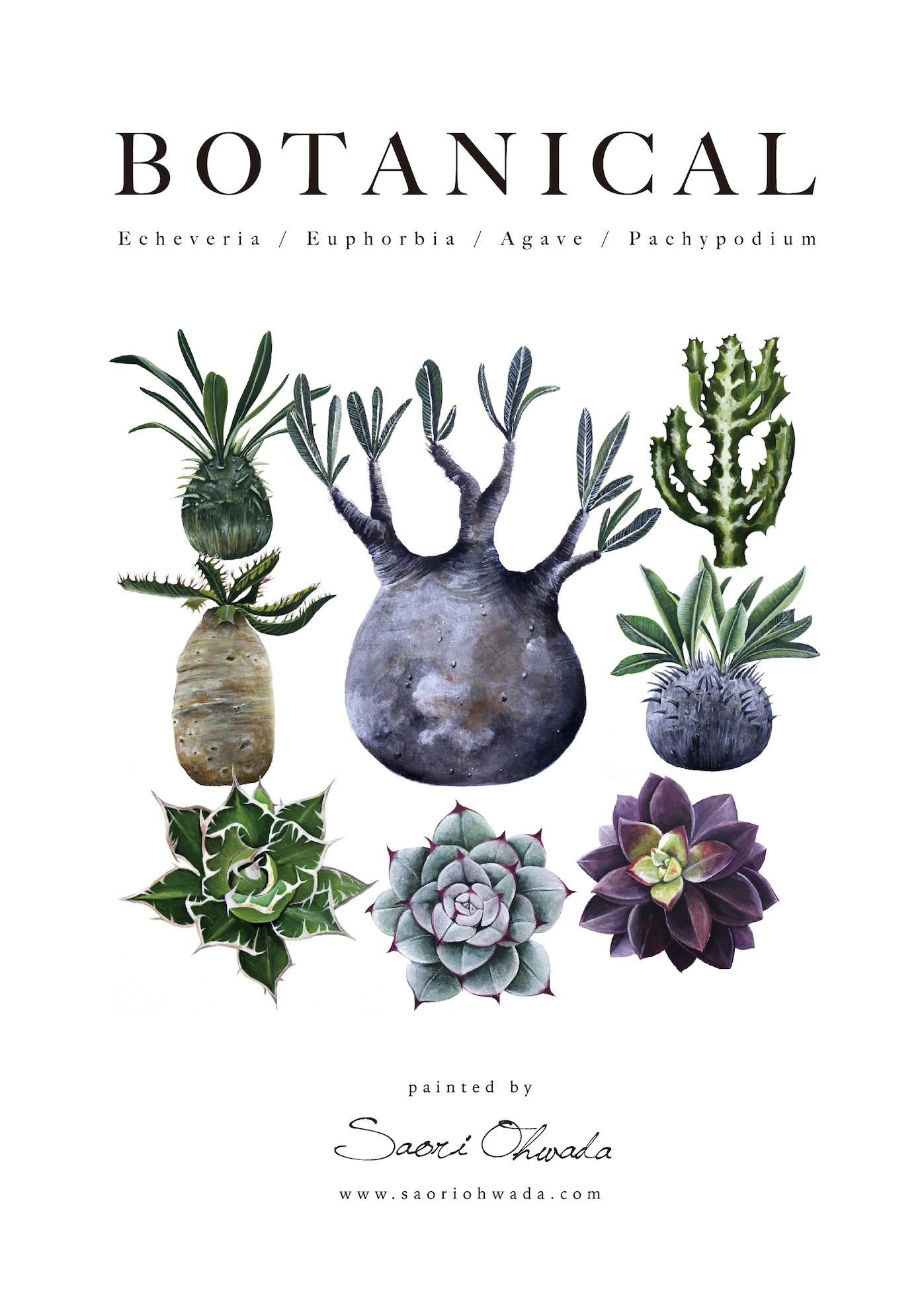Botanical ポスター vol.1