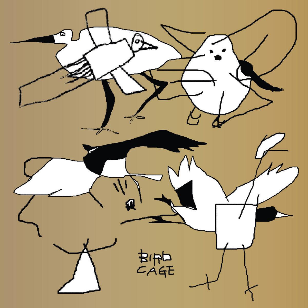 V.A. - Bird Cage: Birdfriend Archives (2LP)