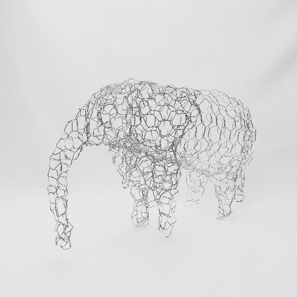 象 / Elephant