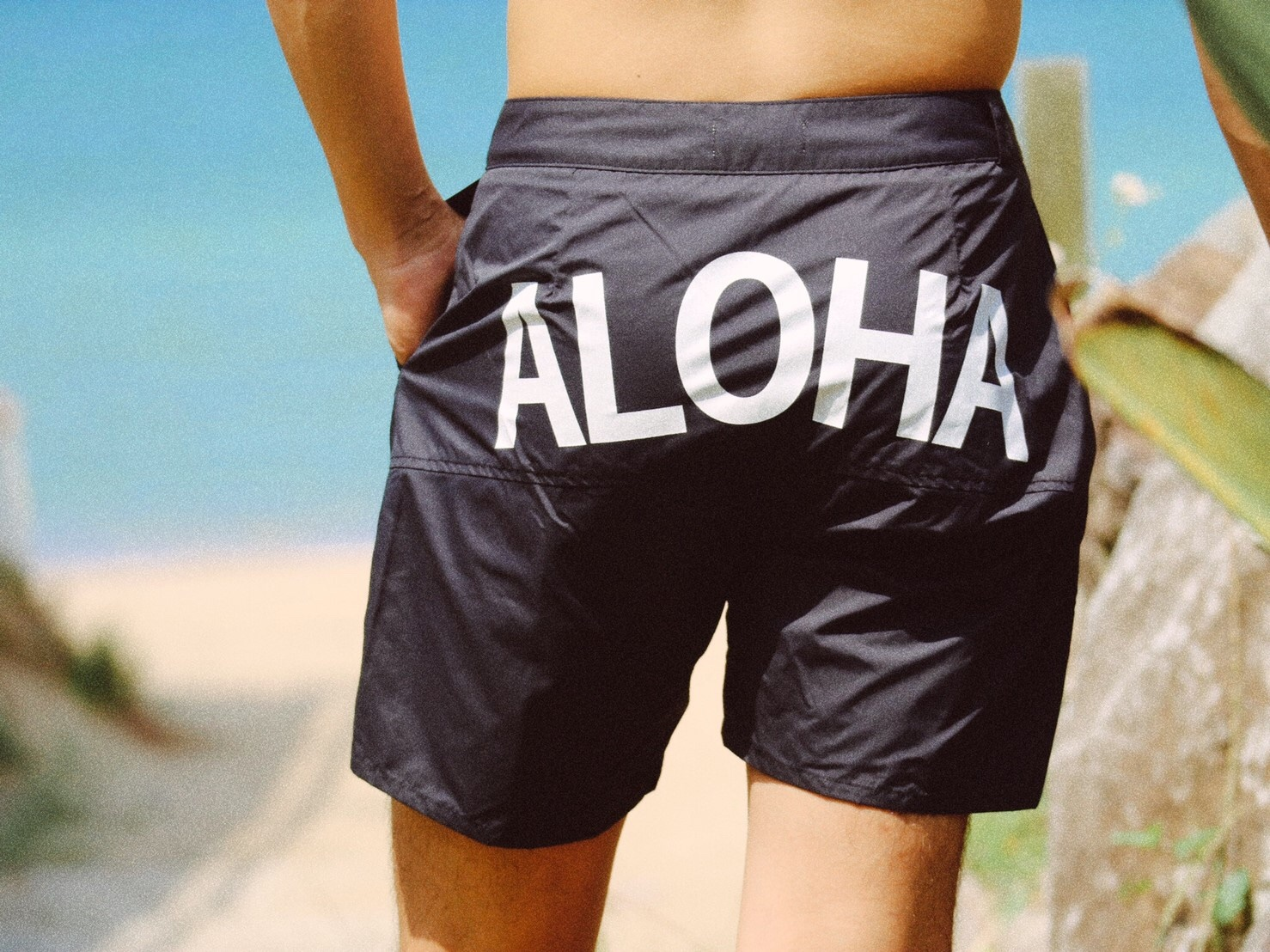 【SUMMER SALE】ALOHA Board Shorts(black)