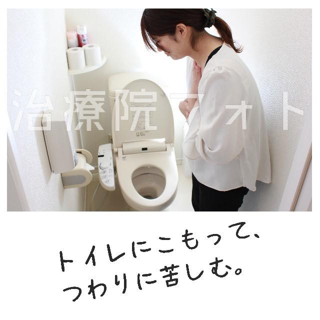 トイレでつわりの吐き気と格闘中。ver.2