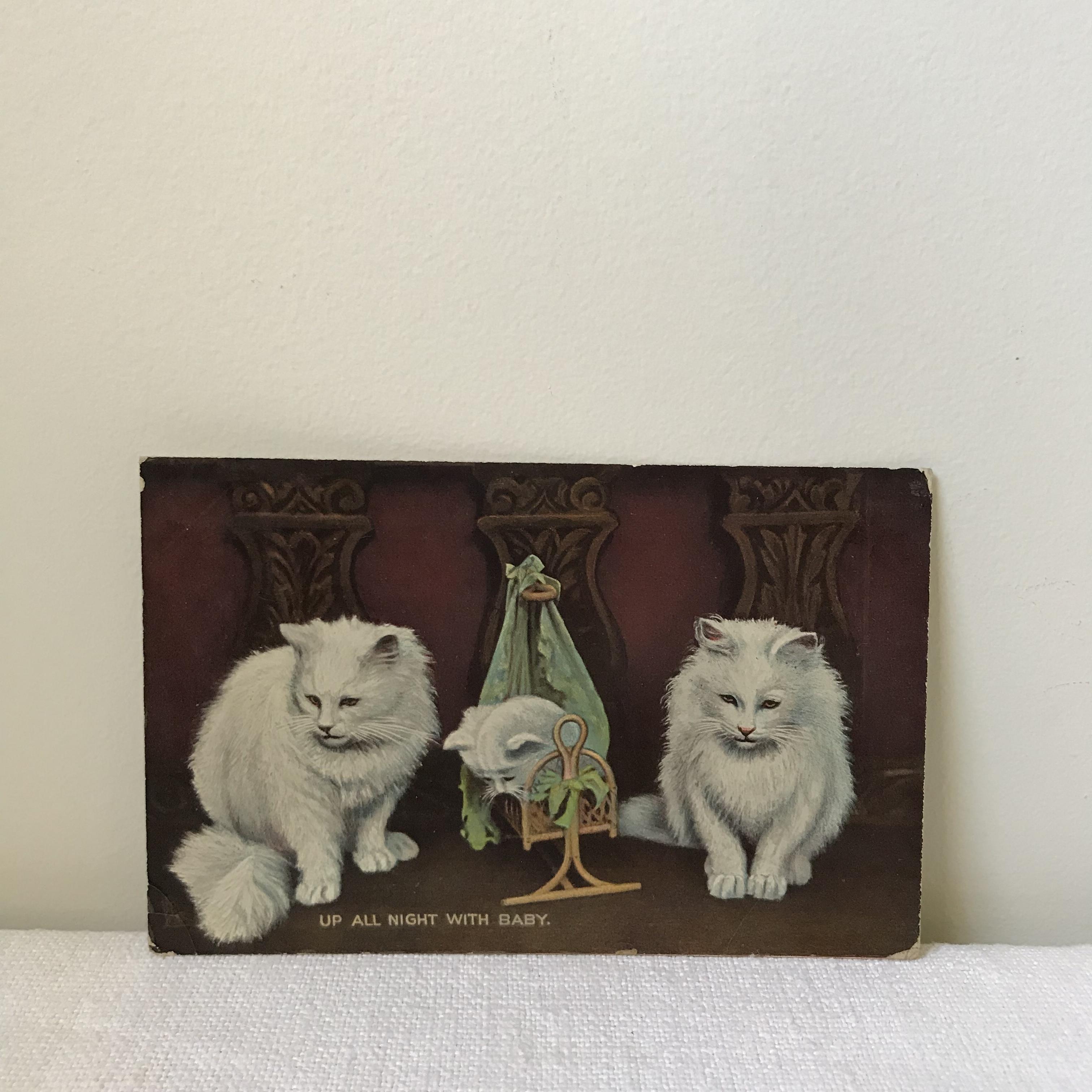 猫のポストカード4